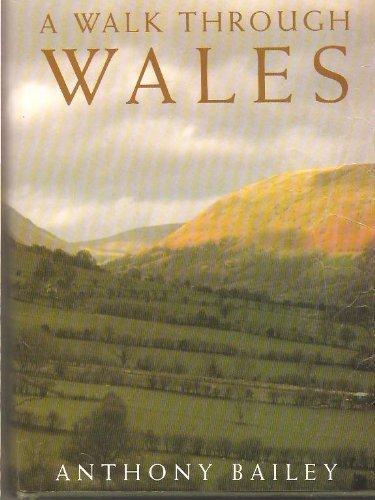 9780224027762: A Walk Through Wales