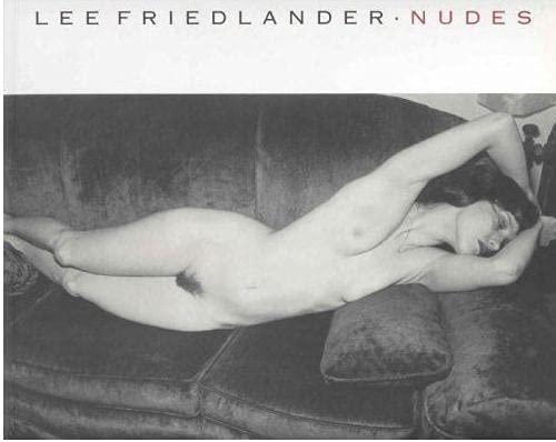 9780224032179: Nudes