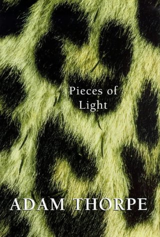 9780224039888: Pieces of Light