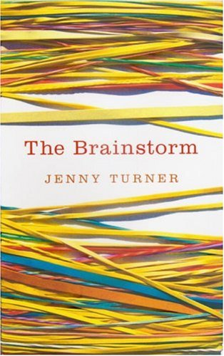 9780224078047: The Brainstorm