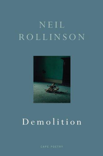 Demolition (Cape Poetry): Rollinson, Neil