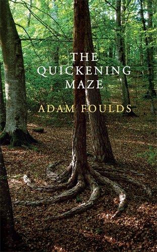 9780224087469: The Quickening Maze