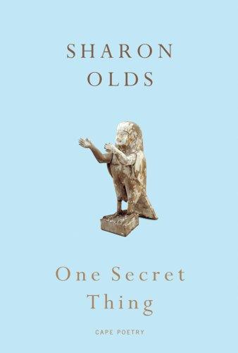 9780224087841: One Secret Thing