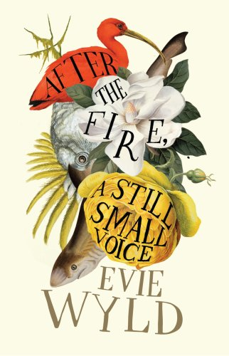 9780224088879: After the Fire, A Still Small Voice
