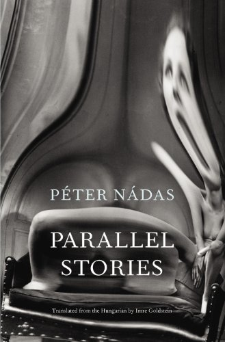 9780224094009: Parallel Stories