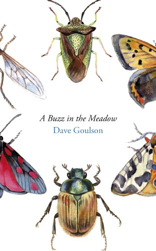 9780224101745: A Buzz in the Meadow