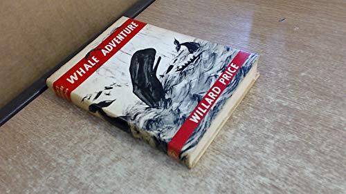 9780224606257: Whale Adventure