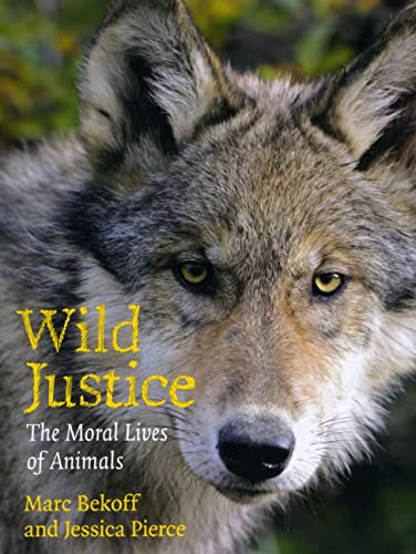 9780226041612: Wild Justice: The Moral Lives of Animals