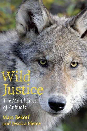 9780226041636: Wild Justice: The Moral Lives Of Animals