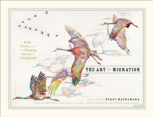 9780226046297: The Art of Migration: Birds, Insects, and the Changing Seasons in Chicagoland