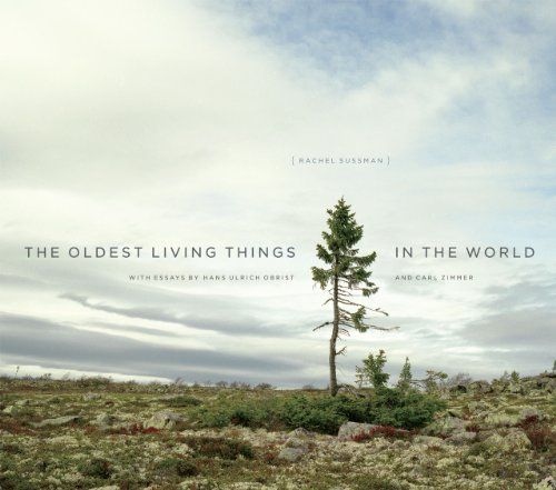 9780226057507: Oldest Living Things in the World