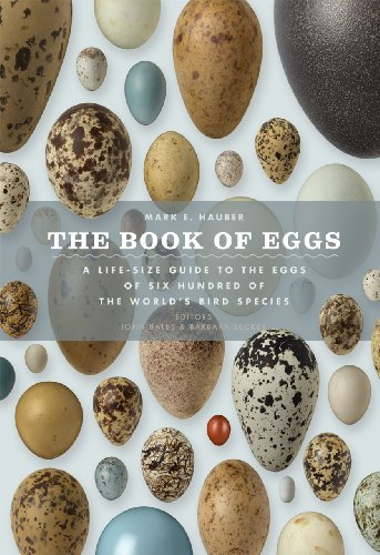 9780226057781: The Book of Eggs: A Life-Size Guide to the Eggs of Six Hundred of the World's Bird Species