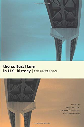 9780226115078: The Cultural Turn in U.S History - Past, Present, and Future