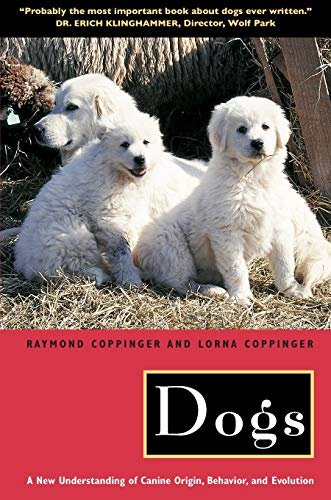9780226115634: Dogs: A New Understanding of Canine Origin, Behavior, and Evolution