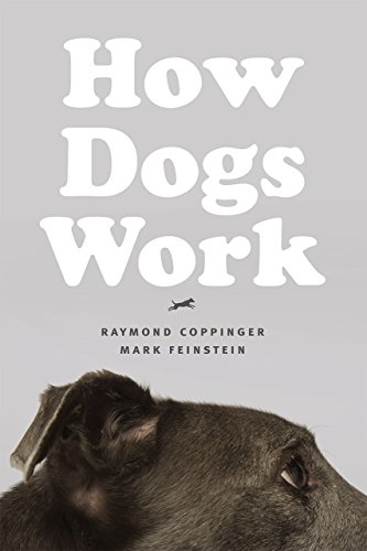 9780226128139: How Dogs Work