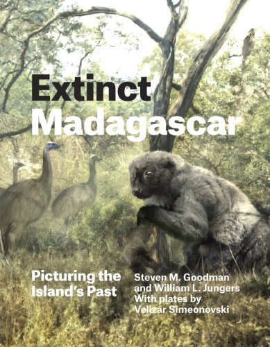 9780226143972: Extinct Madagascar: Picturing the Island's Past