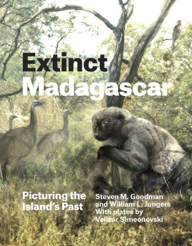 9780226143972: Extinct Madagascar: Picturing the Island's Past