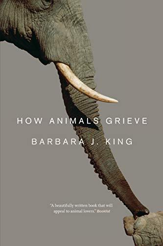 9780226155203: How Animals Grieve