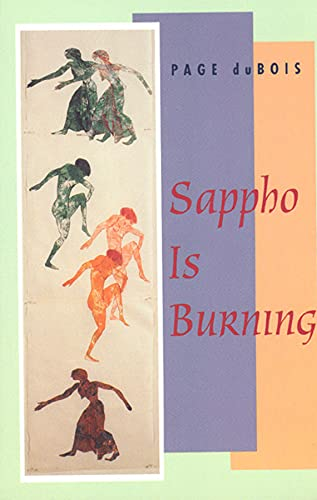 9780226167558: Sappho Is Burning