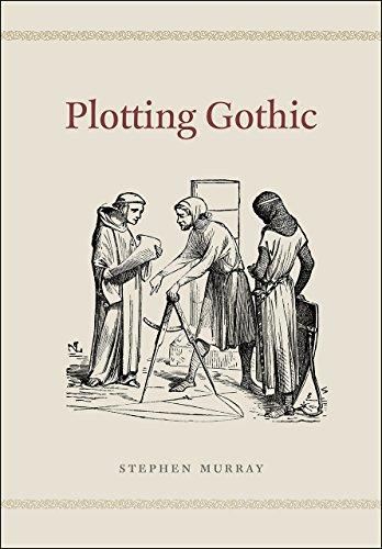9780226191805: Plotting Gothic