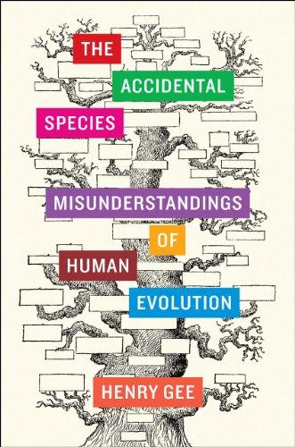 9780226284880: The Accidental Species: Misunderstandings of Human Evolution