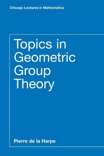 9780226317212: Topics in Geometric Group Theory (Chicago Lectures in Mathematics)