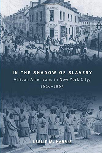 9780226317731: In the Shadow of Slavery: African Americans in New York City, 1626-1863 (Historical Studies of Urban America)