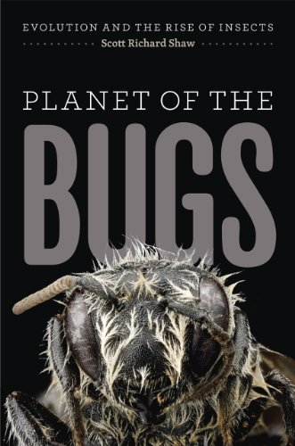9780226325750: Planet of the Bugs: Evolution and the Rise of Insects
