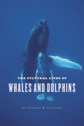 9780226325927: The Cultural Lives of Whales and Dolphins