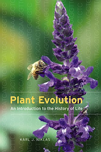 Plant Evolution: An Introduction to the History of Life (Paperback): Karl J. Niklas