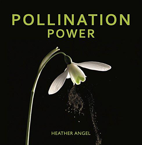 9780226366913: Pollination Power