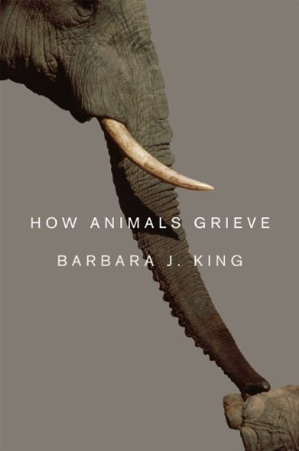 9780226436944: How Animals Grieve