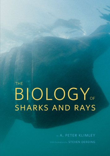 9780226442495: The Biology of Sharks and Rays