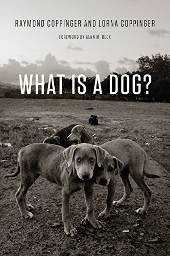 9780226478227: What Is a Dog?