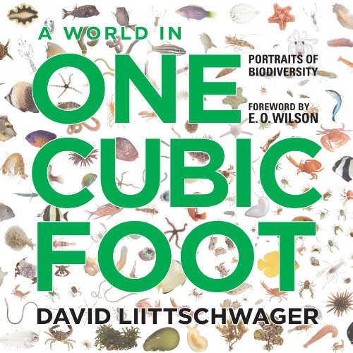 A World in One Cubic Foot: Portraits of Biodiversity: W. S. Di Piero; Alan Huffman; August ...