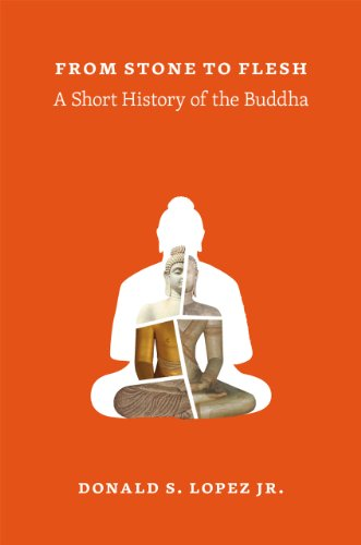 9780226493206: From Stone to Flesh: A Short History of the Buddha (Buddhism and Modernity)