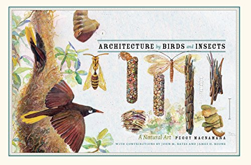 9780226500973: Architecture by Birds and Insects: A Natural Art