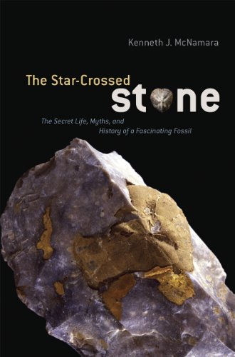 The Star-Crossed Stone : The Secret Life, Myths, and History of a Fascinating Fossil