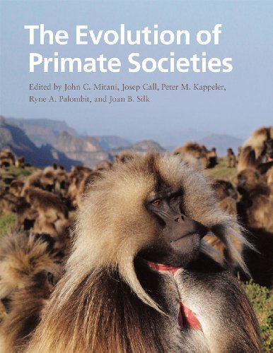 9780226531724: The Evolution of Primate Societies