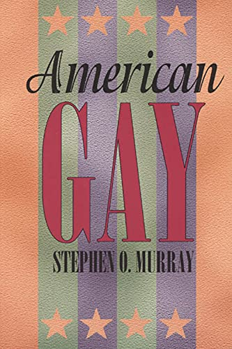 9780226551913: American Gay (Worlds of Desire)