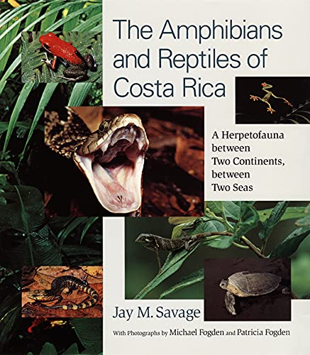 9780226735382: The Amphibians and Reptiles of Costa Rica - A Herpetofauna between Two Continents between Two Seas