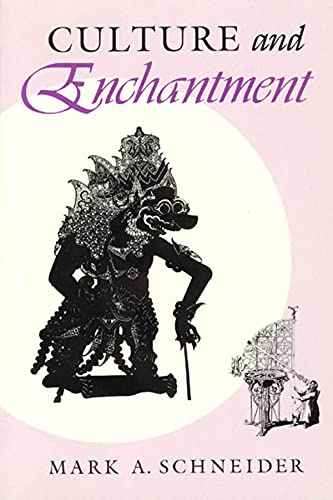 9780226739274: Culture and Enchantment