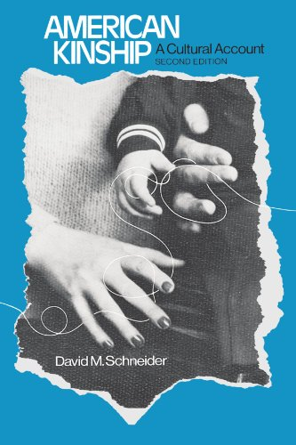 post modernism and the social sciences rosenau pauline marie