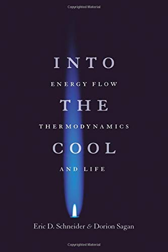 9780226739373: Into the Cool: Energy Flow, Thermodynamics, And Life