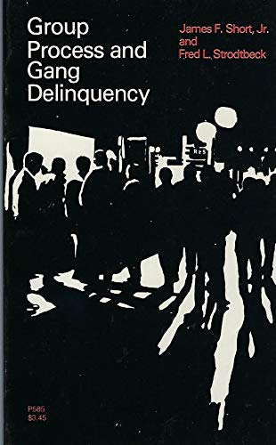 9780226754642: Group Process and Gang Delinquency