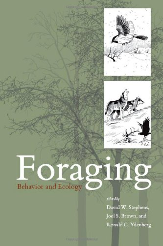 9780226772639: Foraging: Behavior and Ecology