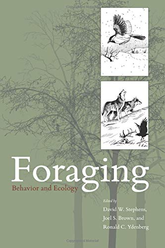 9780226772646: Foraging: Behavior And Ecology