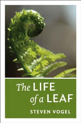 9780226859392: The Life of a Leaf