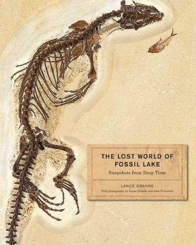 9780226922966: The Lost World of Fossil Lake: Snapshots from Deep Time
