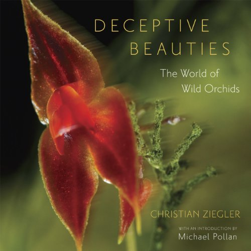 9780226982977: Deceptive Beauties: The World of Wild Orchids